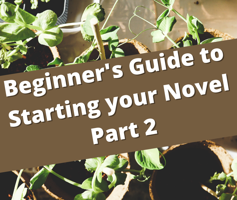 A Beginner's Guide to starting your Novel
